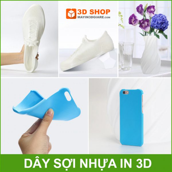 Su Dung Nhua Deo In 3d